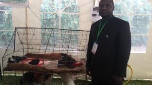 Dan Dobi Yacouba, le promoteur de la ferme Youyou, avec derrière lui, dans la cage, des «poules Youyou», croisement de pintades et de coqs.