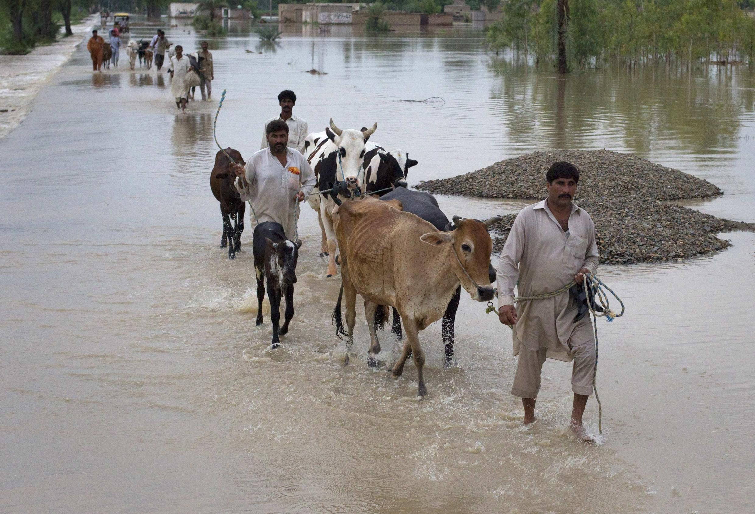 Millions of Pakistanis were displaced by floods in 2010