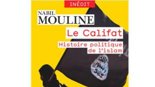 « Le califat, histoire politique de l'islam », de Nabil Mouline, Collection Champs Histoire.