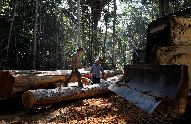 Deforestation near Humaita, in Amazonas state, Brazil, on 20 September, 2019.