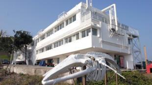 香港大學太古海洋科學研究所
