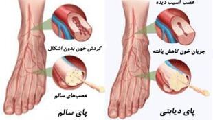 برای شنیدن توضیحات دکتر عباس حلاج کرلادانی، بر روی تصویر کلیک کنید