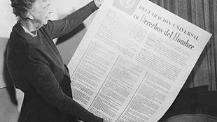Phu nhân tổng thống Mỹ Roosevelt, bà Eleanor Roosevelt, xem bản Tuyên Ngôn Quốc Tế Nhân Quyền (tiếng Tây Ban Nha). Ảnh chụp năm 1949.