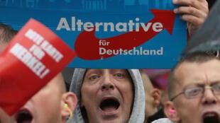 """Militantes do partido de extrema-direita """"Alternativa para a Alemanha"""""""