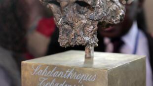 """""""Toumaï"""" era até agora considerado o mais velho pré-humano, mas estudo aponta que """"Graecopithecus"""" é mais velho."""