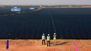 La société indienne ACME a ouvert en 2016 cette ferme solaire d'une capacité de 50 MW d'électricité, à 140 km de Bangalore (sud).