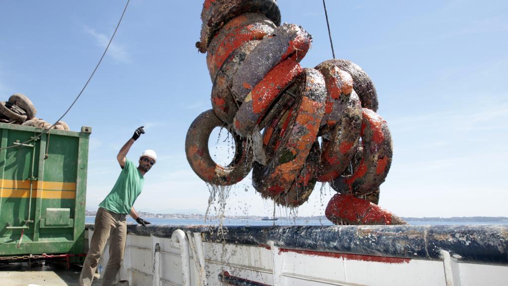 Treinta años después de la instalación de arrecifes de neumáticos en la costa francesa del Mediterráneo, se ha comprobado su papel contaminante.