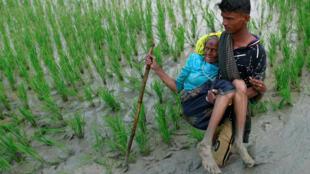 تعداد زیادی از مسلمانان روهینگیا به بنگلادش فرار کردند