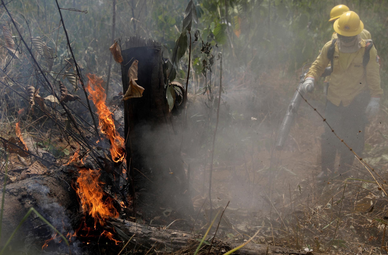 亚马逊森林大火 2019年8月25日 Des pompiers éteignent un feu dans la forêt amazonienne, à Porto Velho, au Brésil, le 25 août 2019.