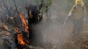 Des pompiers éteignent un feu dans la forêt amazonienne, à Porto Velho, au Brésil, le 25 août 2019.