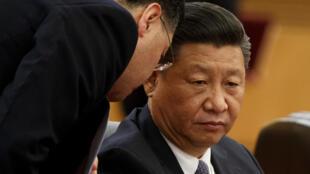 11月2日,習近平在北京人民大會堂。