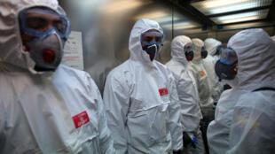 Информация об искусственном создании коронавируса не нашла подтверждений у экспертов