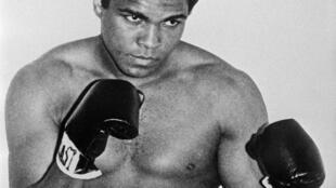 L'ancien champion du monde de boxe dans la catégorie des poids lourds, Mohamed Ali (Cassius Clay). Il devint champion olympique des poids mi-lourds en 1960, puis champion du monde poids lourds, pour la première fois, en février 1964 contre Sonny Liston.