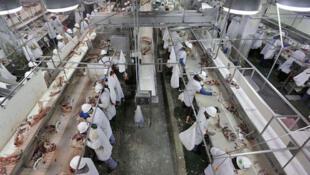 Interior de um frigorífico da Cargill Meat Solution, uma das maiores empresas americanas do setor de carnes.