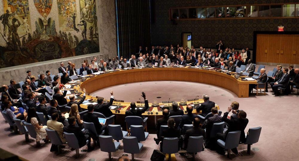 شورای امنیت سازمان ملل متحد