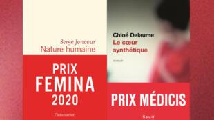 """""""Nature humaine"""", de Serge Joncour, prix Femina et """"Coeur synthétique"""", de Chloé Delaume, prix Médicis."""