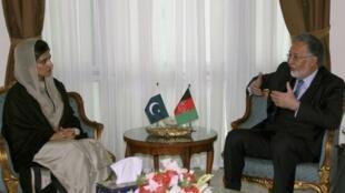 阿富汗外长在喀布尔会见到访的巴基斯坦外长。2012年2月1日。