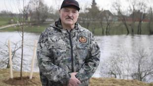 Александр Лукашенко на всебелорусском субботнике 17 апреля 2021 г.