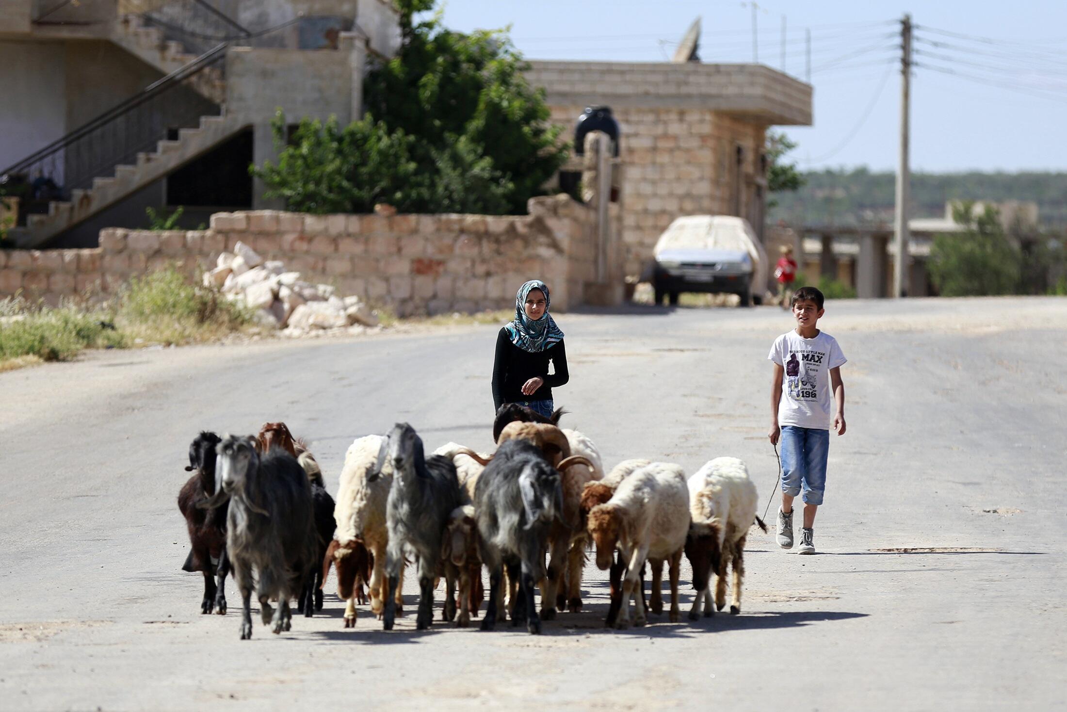Ciudad de Idlib, en el noroeste de Siria, este 18 de mayo de 2014.