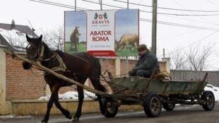 Charrete passa em frente de um abatedouro de cavalos, na Romênia.