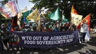 Des manifestants réclamant la sortie des produits agricoles des règles de l'OMC, avant l'ouverture de la 9e conférence interministérielle de l'OMC à Bali, ce mardi 3 décembre 2013.
