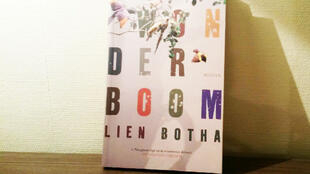 «Wonderboom» de Lien Botha.