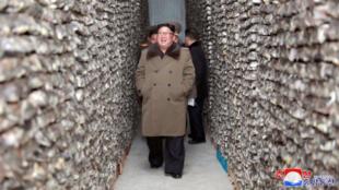 Le dirigeant nord-coréen Kim Jong-un en visite dans une pêcherie dans la région de Donghae en Corée du Nord.