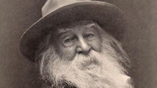 Walt Whitman en 1887.