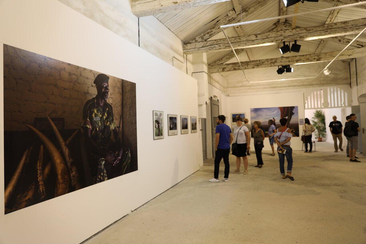 L'exposition «Rangers», de Brent Stirton, au festival Visa pour l'image 2019.