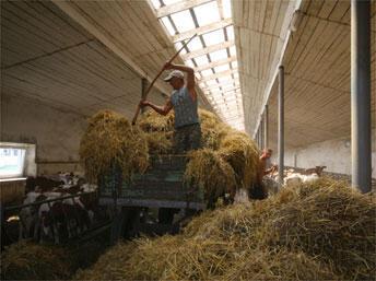 Agriculture bio en Ukraine.