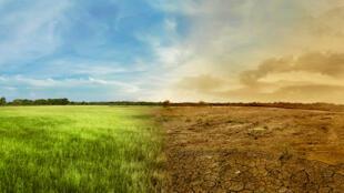 A COP visa negociar um enfrentamento pacífico do aquecimento global e de seus impactos para o planeta