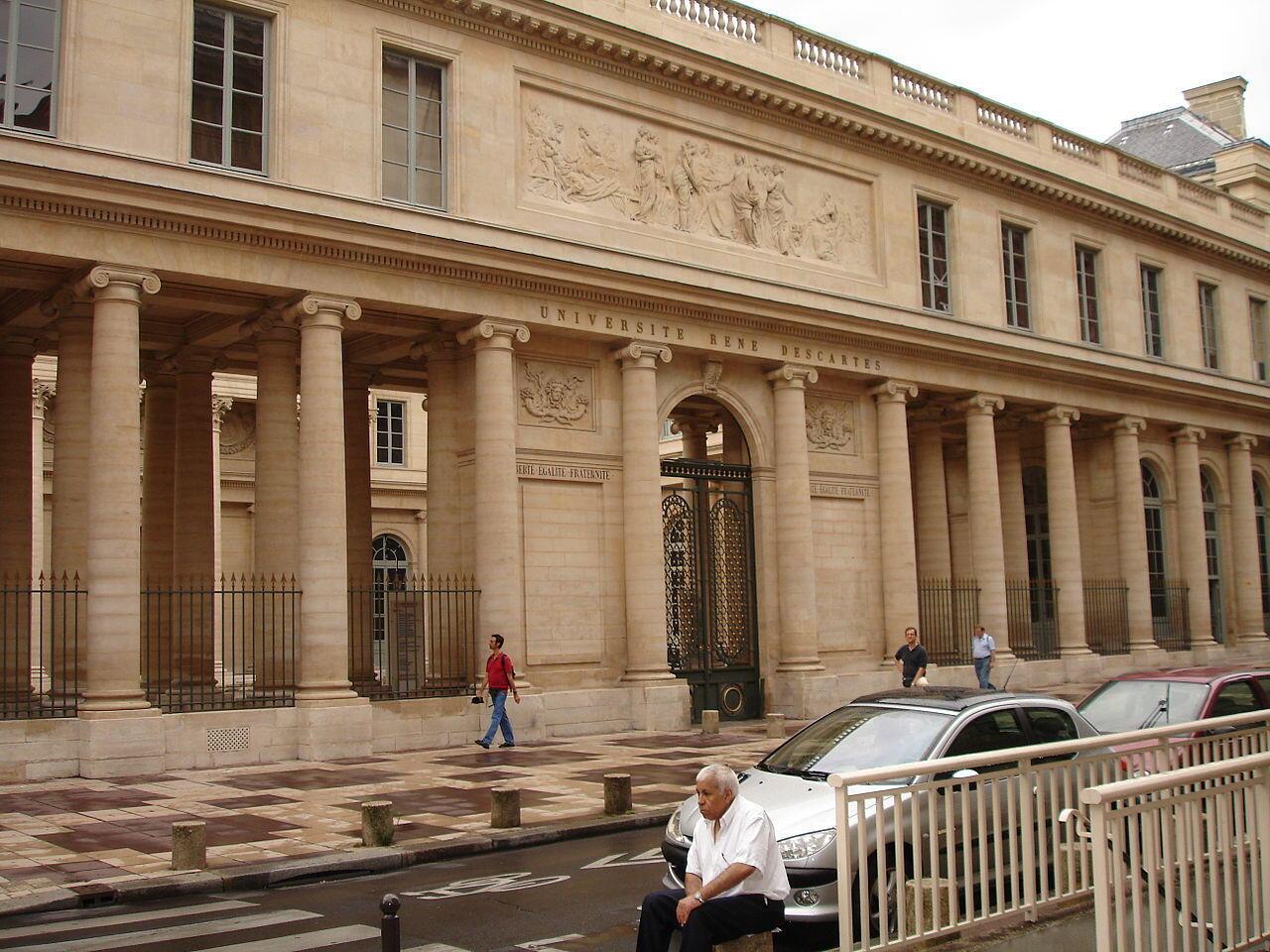 Cadáveres desmembrados, amontoados, alguns caindo de sacos do lixo... Estas cenas dignas de um filme de terror foram fotografadas em 2018 no coração de Paris, na Universidade Paris-Descartes.