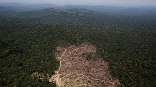 An aerial view of a tract of Amazon jungle cleared by loggers and farmers near the city of Novo Progresso, Brazil.