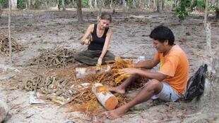 Preparándose para la toma de ayahuasca o yagé.