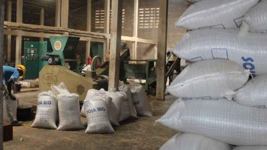 La société togolaise Agrokom exporte la totalité de ses 2 500 tonnes de graines et de tourteaux vers la France et l'Italie.
