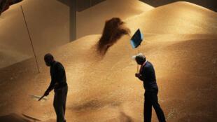 Los precios de los cereales cayeron un 1%, impulsados por la caída del maíz estadounidense y ucraniano.