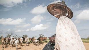 Un agriculteur malien de la région de Mopti.