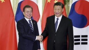 韩国总统文在寅(左)与中国国家主席习近平2019年12月23日北京人大会堂