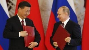 Tổng thống Nga Vladimir Putin (P) và đồng nhiệm Trung Quốc, Tập Cận Bình tại điện Kremlin, Nga, ngày 04/07/2017.