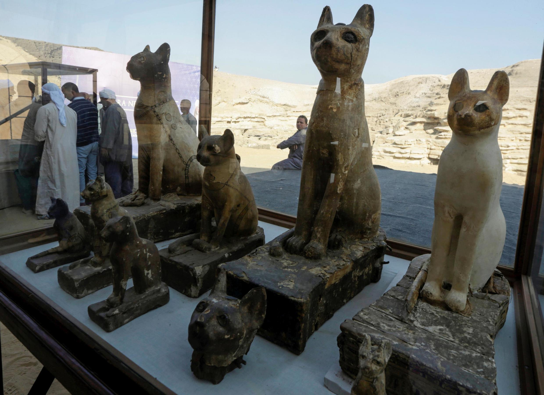 Египетская археологическая экспедиция обнаружила в Саккаре захоронение мумий священных животных и птиц