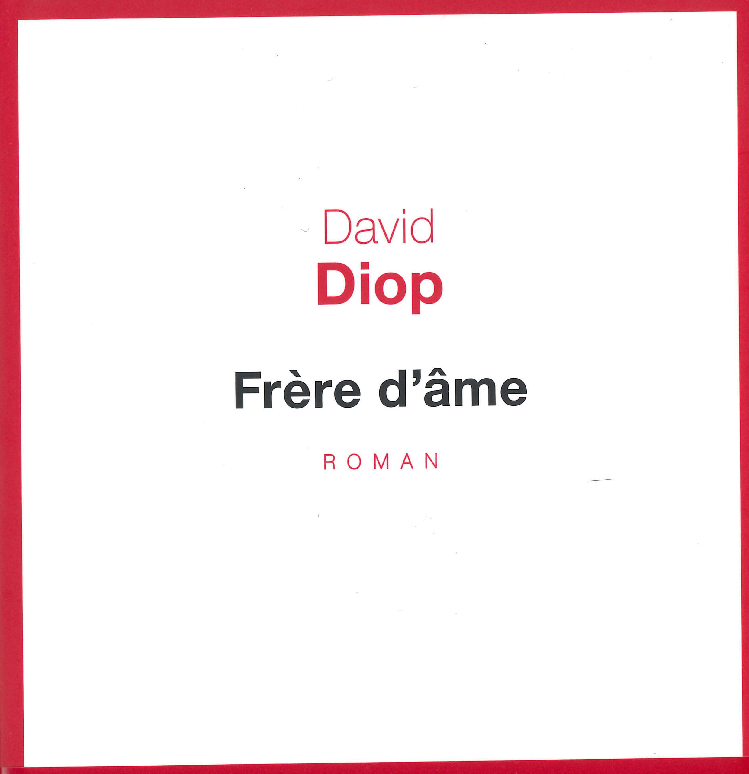Un premier roman émouvant sur la bravoure et la le désarroi des tirailleurs sénégalais sur les champs de bataille de la Première Guerre mondiale.