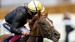 Stradivarius hopes of rounding off his season in victorious fashion ended in disappointment with Frankie Dettori saying the game was up at halfway