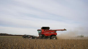 La Chine va-t-elle soutenir encore longtemps les cours des céréales?