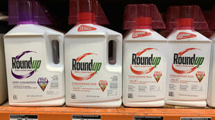 """""""Bayer is a massive, wealthy company, and it continues to make money specifically from Roundup sales,"""" US district judge VinceChhabria said"""