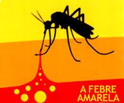 Epidemia de febre amarela já matou mais de 50 pessoas e afecta mais de 240 pessoas em Angola