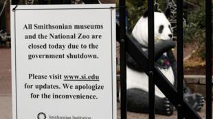 Les pandas du zoo de Washington ne reçoivent plus aucune visite, le zoo étant fermé ç cause du «shutdown».