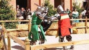 Чемпионат по средневековому бою в Испании, 2014