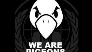 Le logo du collectif «Les pigeons, mouvement de défense des entrepreneurs français»