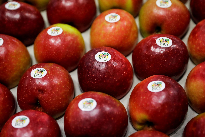 Maçãs organicas da cooperativa de frutas Limdor em Saint-Yrieix-la-Perche, no centro-oeste da França, em 21 de dezembro de 2018.