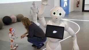 Robot Pepper đứng trước  robot Nao nhỏ bé hơn tại trụ sở của hãng Aldebaran Robotics tại thành phố Issy-les-Moulineaux gần Paris. Ảnh chụp  ngày 02/07/2014.